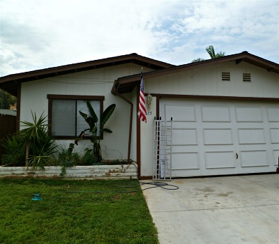 Escondido Single Family Home For Sale: 225 Walnut Glen