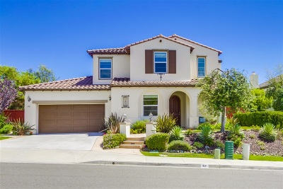 San Marcos Single Family Home For Sale: 801 Hollowbrook Ct
