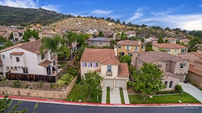 San Marcos Single Family Home For Sale: 480 Camino Verde