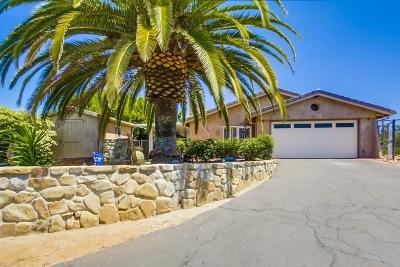 Escondido Single Family Home For Sale: 2522 Terrella Place
