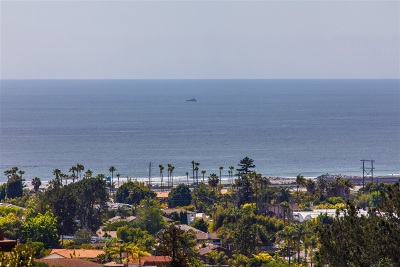 Encinitas Single Family Home For Sale: 1711 Burgundy Rd