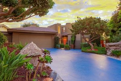 Escondido Single Family Home For Sale: 10915 Rim Road