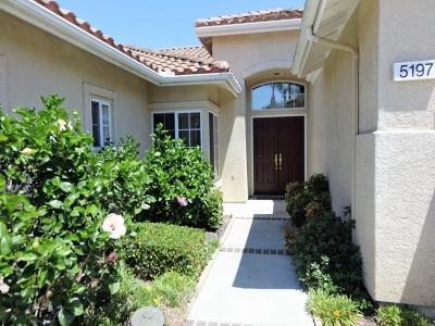 Oceanside Single Family Home For Sale: 5197 Mertensia St