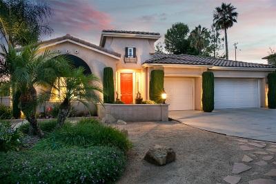 Escondido Single Family Home For Sale: 1411 Logan Ct