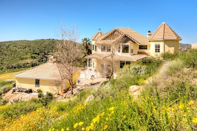 Poway Single Family Home For Sale: 14701 Twin Peaks Road