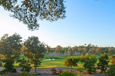 Rancho Santa Fe Single Family Home For Sale: 5229 Avenida Maravillas
