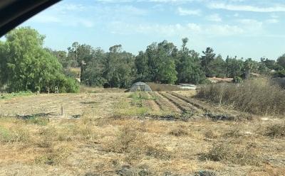 Vista Residential Lots & Land For Sale: 1629 Sunset Dr #100