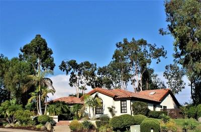 Escondido Single Family Home For Sale: 3520 Santa Flora Ct.