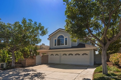 Encinitas Single Family Home For Sale: 333 Horizon Dr.