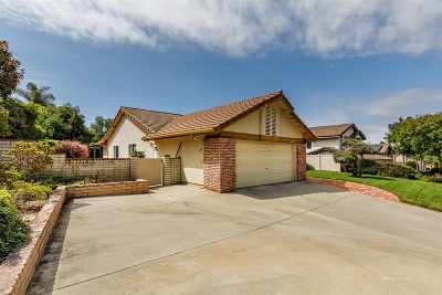 Encinitas Single Family Home For Sale: 621 Shanas Ln