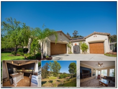 Escondido Single Family Home For Sale: 26239 Wyndemere Ct