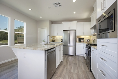 Escondido Single Family Home For Sale: 2677 Overlook Point Dr