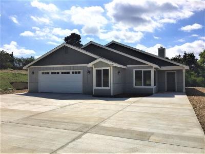 Single Family Home For Sale: 1675 Joshua Tree Lane
