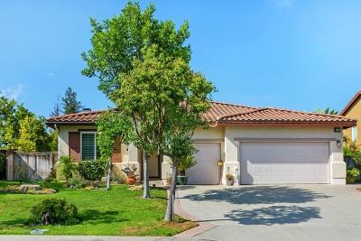 Escondido Single Family Home For Sale: 27813 Dogwood Gln