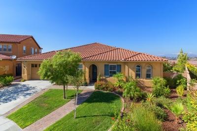 Murrieta, Temecula Single Family Home For Sale: 34498 Piocho Ct.