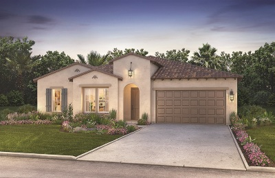 Escondido Single Family Home For Sale: 1141 Witherby Lane