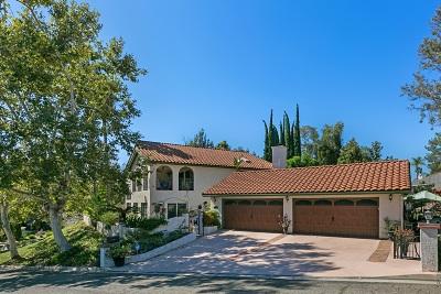 Escondido Single Family Home For Sale: 2654 Gianelli Lane