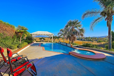 Riverside County Single Family Home For Sale: 29887 Via Norte