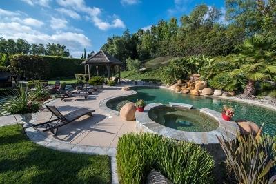 Single Family Home For Sale: 14062 Caminito Vistana