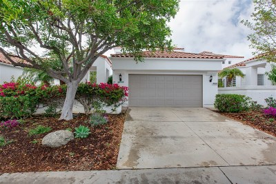Oceanside Single Family Home For Sale: 4958 Lerkas Way