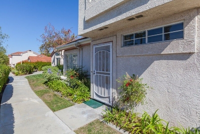 Chula Vista Single Family Home For Sale: 1121 Acebo Corte