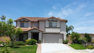 Oceanside Single Family Home For Sale: 4282 Corte Verde