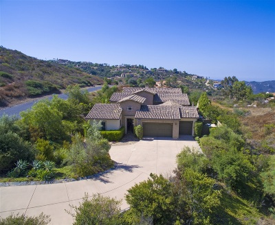 Escondido Single Family Home For Sale: 29368 Welk Highland Dr