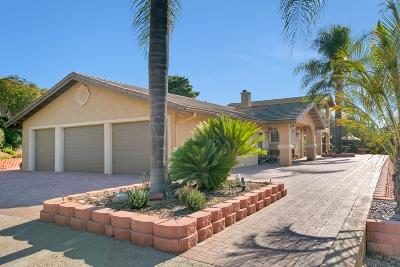 Escondido Single Family Home For Sale: 20617 Viento Valle