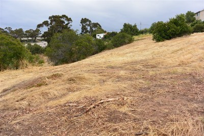 San Diego Residential Lots & Land For Sale: 23 Lots C Street #1