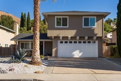 Oceanside Single Family Home For Sale: 3191 Noreen Way