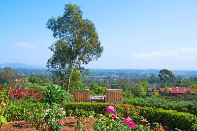 Rancho Santa Fe Single Family Home For Sale: 5859 Linea Del Cielo