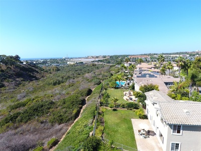Carlsbad Single Family Home For Sale: 1037 Goldeneye View