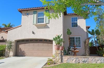 San Marcos Single Family Home For Sale: 365 Avenida La Cuesta