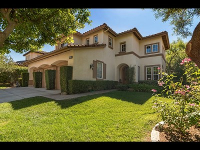 Escondido Single Family Home For Sale: 3119 Ferncreek Ln