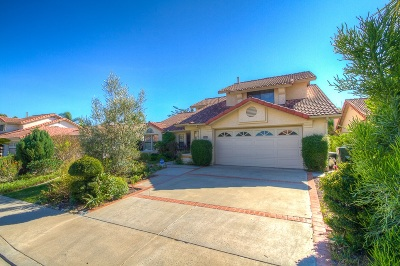 Vista Single Family Home For Sale: 2593 Magellan Ln