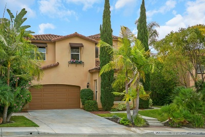 Carlsbad CA Rental For Rent: $4,200