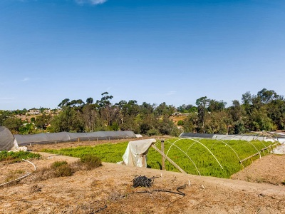 Vista Residential Lots & Land For Sale: 1629 Sunset Dr #100
