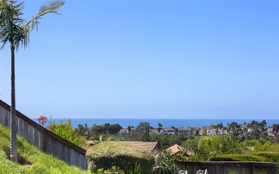 Carlsbad Single Family Home For Sale: 7219 Wisteria Way