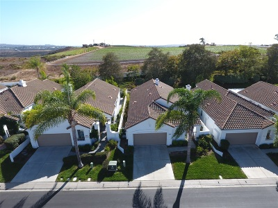 Oceanside Single Family Home For Sale: 4905 Demeter Way.