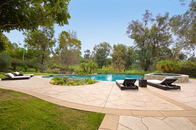 Rancho Santa Fe Single Family Home For Sale: 6673 Calle Ponte Bella