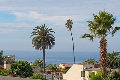 La Jolla Single Family Home For Sale: 536 Genter St