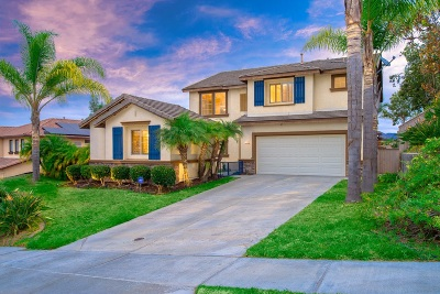 Chula Vista Single Family Home For Sale: 1165 Hanford Court