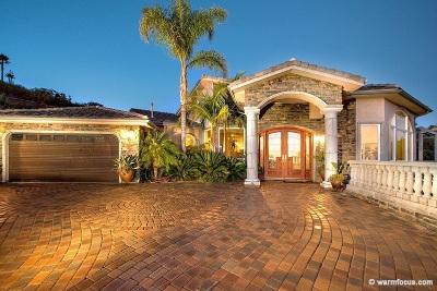 Del Cerro, Del Cerro Heights, Del Cerro Highlands, Del Cerro Terrace Single Family Home For Sale: 6372 Rockhurst Dr