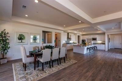 Vista Single Family Home For Sale: 1824 Lemonadeberry Lane