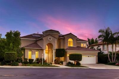 Oceanside,  Carlsbad , Vista, San Marcos, Encinitas, Escondido, Rancho Santa Fe, Cardiff By The Sea, Solana Beach Rental For Rent: 2867 Rancho Diamonte