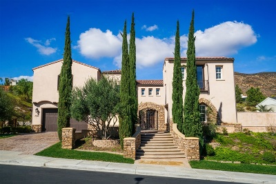 Chula Vista Single Family Home For Sale: 458 Evening View Dr.