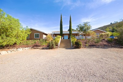 Escondido Single Family Home For Sale: 8952 Mount Israel Road