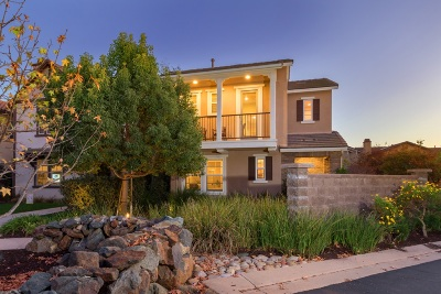 Single Family Home For Sale: 8451 Old Stonefield Chase