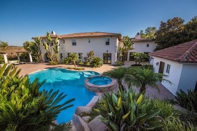 Single Family Home For Sale: 14169 Caminito Vistana