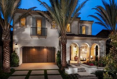Carlsbad, Carlsabd Single Family Home For Sale: 2491 Wellspring St.